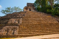 Palenque, Chiapas, Mexico: Huge ancient pyramid with steps in the archaeological complex. PALENQUE, MEXICO: Huge ancient pyramid with steps in the Royalty Free Stock Image