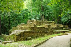 Palenque, Mexico. Ruins of the ancient Mayan city in a dense tropical rainforest, Palenque, Chiapas, Mexico Royalty Free Stock Images