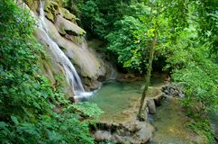 Palenque rainforest waterfall Royalty Free Stock Photos