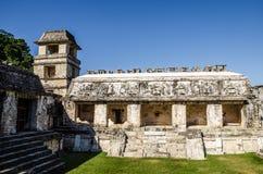 Palenque - rovine maya della città Fotografia Stock Libera da Diritti