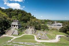 Palenque - ruínas maias da cidade Fotografia de Stock Royalty Free