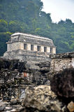 Palenque ruins. Looking through the ruins at Palenque Stock Photography