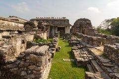 Palenque ruins maya archiological mexico. History city chiapas national park stock photo