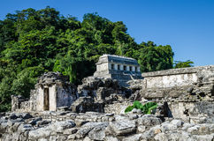 Palenque ruins in Mexico Stock Photography