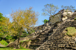 Palenque Temple Royalty Free Stock Photos