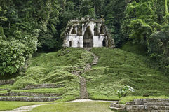Palenque - templo do maya fotografia de stock