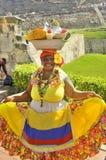 Palenquera妇女 库存照片