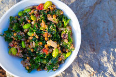 Paleo Diet Quinoa Kale Salad Stock Photos