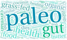 Paleo Word Cloud. On a white background Stock Images