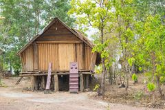 Paleolithic thatched huts Stock Photography