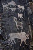 Paleolityczni petroglify w sławnym Sarmish wąwozie Fotografia Royalty Free