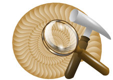 Paleontology. Scientific background with ammonite prehistoric fossil Royalty Free Stock Photography