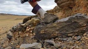Paleontology wykopaliska Skamieniała ekskawacja i ekstrakcja zdjęcie wideo