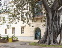 Palermo Royalty-vrije Stock Afbeeldingen