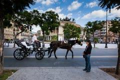 PALERMO ITALIEN - Oktober 14, 2009: Hästvagn i bakgrund Fotografering för Bildbyråer