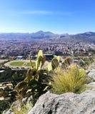 Palermo krajobraz Obrazy Stock