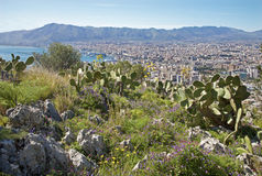 Palermo - outlook over city and harbor form Mount Pelegrino Stock Images