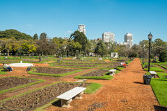 Palermo parks, Buenos Aires Royalty Free Stock Photo