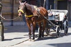 Palermo, Quattro Canti Stock Images