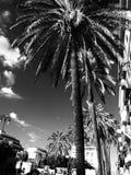 Palermo Sicily arkivbild