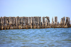Pales of a breakwater Royalty Free Stock Images