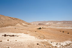 Palestina Imagenes de archivo