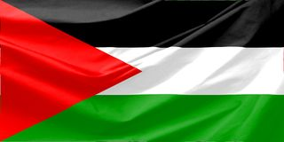 Palestine Flag Stock Photo