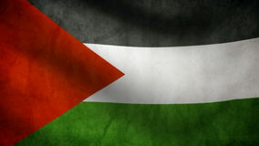 Palestine flag Royalty Free Stock Image