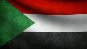 Palestine flag stock footage
