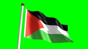 Palestine flag stock footage