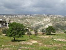 Palestinian territory landscape in a broad panorama. Near Bethlehem and Beit Sahour there is a beautiful panorama of the holy land with olive trees and royalty free stock photo