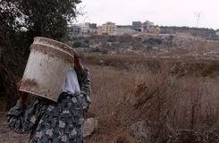 Palestinian women harvesting olives, Palestine Royalty Free Stock Photography