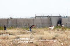Palestinsk protest vid väggen av avskiljandeVästbanken Arkivbild