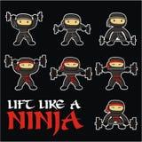 Palestra di Ninja Immagini Stock