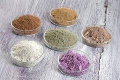 Paleta cosmética das argilas para o tratamento dos TERMAS e do corpo Fotografia de Stock Royalty Free