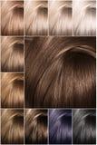 Paleta de cores do cabelo com uma vasta gama de amostras de folha Amostras tingidas da cor do cabelo arranjadas em um cartão em f fotos de stock royalty free
