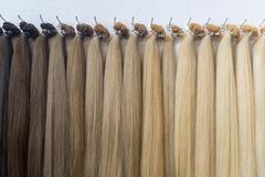 Paleta de cores do cabelo Fundo da textura do cabelo, grupo de cores do cabelo imagem de stock