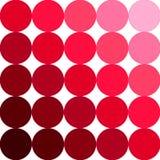 Paleta de Rosa Fotografia de Stock