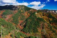 Paleta del otoño Fotografía de archivo