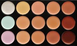 Paleta profesional del maquillaje Imagen de archivo libre de regalías
