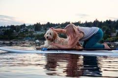 Paleta profunda de la ensenada con el perro fotografía de archivo libre de regalías