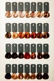 Paleta różni kolory włosiany barwidło fotografia stock