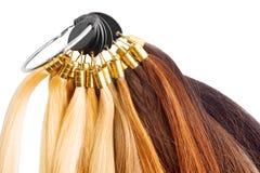 Paleta superior de la extensión del pelo con las muestras del color del blonde a Foto de archivo libre de regalías