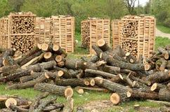 Paletas de madera del fuego foto de archivo