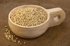 Paletta della farina di grano saraceno Fotografia Stock
