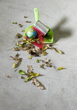 Paletta per la spazzatura con rifiuti e terra Fotografie Stock