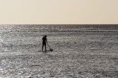 Palette bardant dans le Pacifique images stock