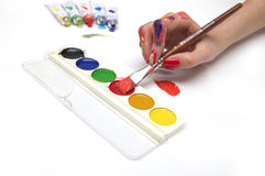 Palette of colors being used. On white background Stock Photo