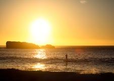 Palette comique Sufer devant le coucher du soleil Photos stock