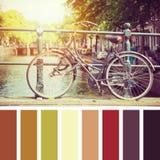 Palette de cycle d'Amsterdam Images libres de droits